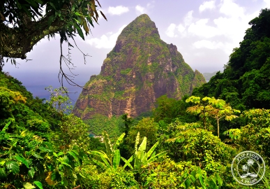 Petit Piton from the ridge above Fond Doux